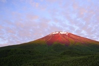 山梨県 中腹より初夏の赤富士