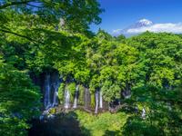 日本 静岡県 白糸の滝