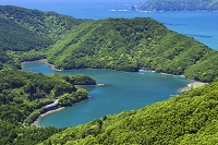 三重県 新緑のハートの入江