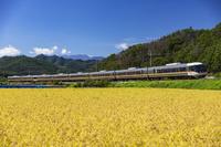 長野県 篠ノ井線と北アルプス