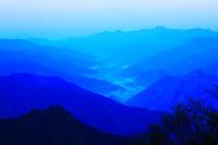 奈良県 大台ヶ原ドライブウェイから谷筋の朝霧 夜明け