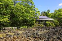 静岡県 楽寿園 渇水時の小浜池と楽寿館