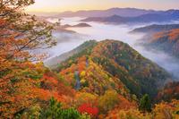 日本 滋賀県 紅葉のおにゅう峠より雲海の山並み朝景