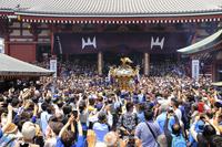 東京都 三社祭の町内神輿連合渡御と浅草寺の本堂