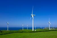 北海道 風力発電と日本海