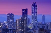 サンシャイン60と池袋の高層ビル群の夜景