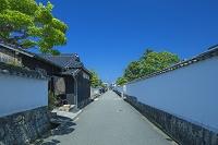 山口県 菊屋横丁と道