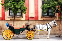 スペイン 観光馬車
