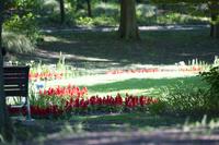 大阪府 都市緑化植物園