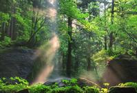 兵庫県 光の吉滝