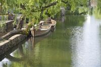 岡山県 くらしき川に係留されている観光川舟