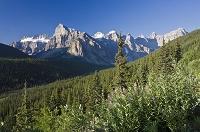 カナダ アルバータ州 バンフ国立公園