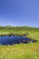 青森県 睡蓮沼と八甲田連峰の風景