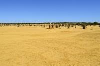 オーストラリア パース ピナクルス