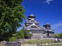 熊本県 熊本城 天守閣