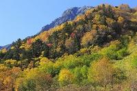 山梨県 南アルプス北岳白根御池小屋より見る紅葉と北岳