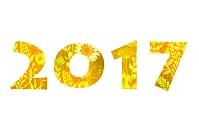 2017花模様
