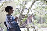 日傘を差して木の前に立つ着物の日本人女性