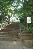 摺鉢山 上野公園 台東区 東京都