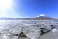山梨県 朝の富士山と山中湖の氷塊