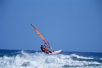 ハワイ ウィンドサーフィン