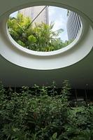 シンガポールのビルの緑化