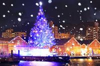 北海道 はこだてクリスマスファンタジーと雪