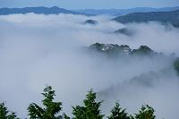 岡山県  備中松山城と雲海