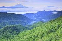 山梨県 乙女高原 残雪の富士山と新緑の山並み
