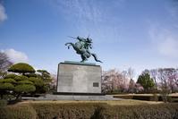 山形県 霞城公園 最上義光騎馬像と桜