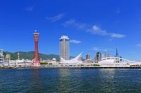兵庫県 ポートタワーと神戸港