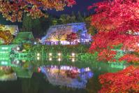岐阜県 飛騨の里のライトアップ