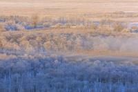 北海道 釧路湿原 細岡展望台からの眺め