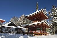 和歌山県 雪の高野山.東塔