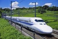 静岡県 東海道新幹線と茶畑 掛川駅~静岡駅 700系