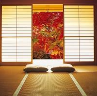 紅葉の見える和室