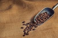 ローストしたコーヒー豆