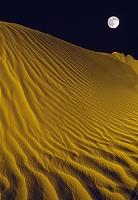 イスラエル ネゲヴ 砂漠を照らす月