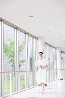廊下を歩く若い日本人女性看護師