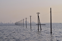 夕方の江川海岸