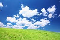 神奈川県 芝生の丘と雲
