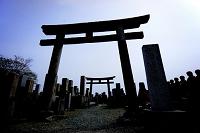 奈良県 来世墓地石鳥居(墓地の中にある鳥居)