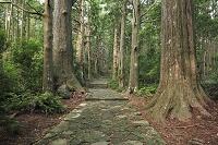 和歌山県 熊野古道の大門坂