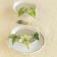 白い器に浮かべたグリーンの葉とカラーストーン