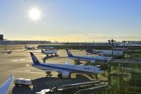 東京都 羽田空港 国際線ターミナル