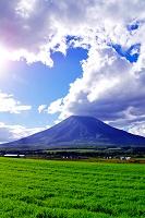 北海道 雲たなびく午後の羊蹄山と緑の草原