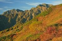 長野県 朝の八方尾根から鹿島槍ケ岳左と五竜岳中央