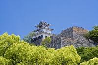 香川県 丸亀城 天守