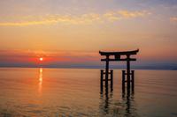 滋賀県 白髭神社 湖中鳥居と朝日