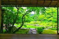 京都府 新緑の無鄰菴(山形有朋の別邸)